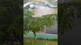 Short video of the Hotel Golden Park Campinas views